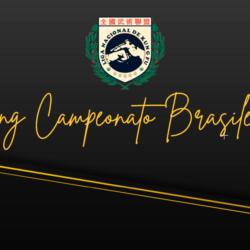 ranking campeonato brasileiro 2018
